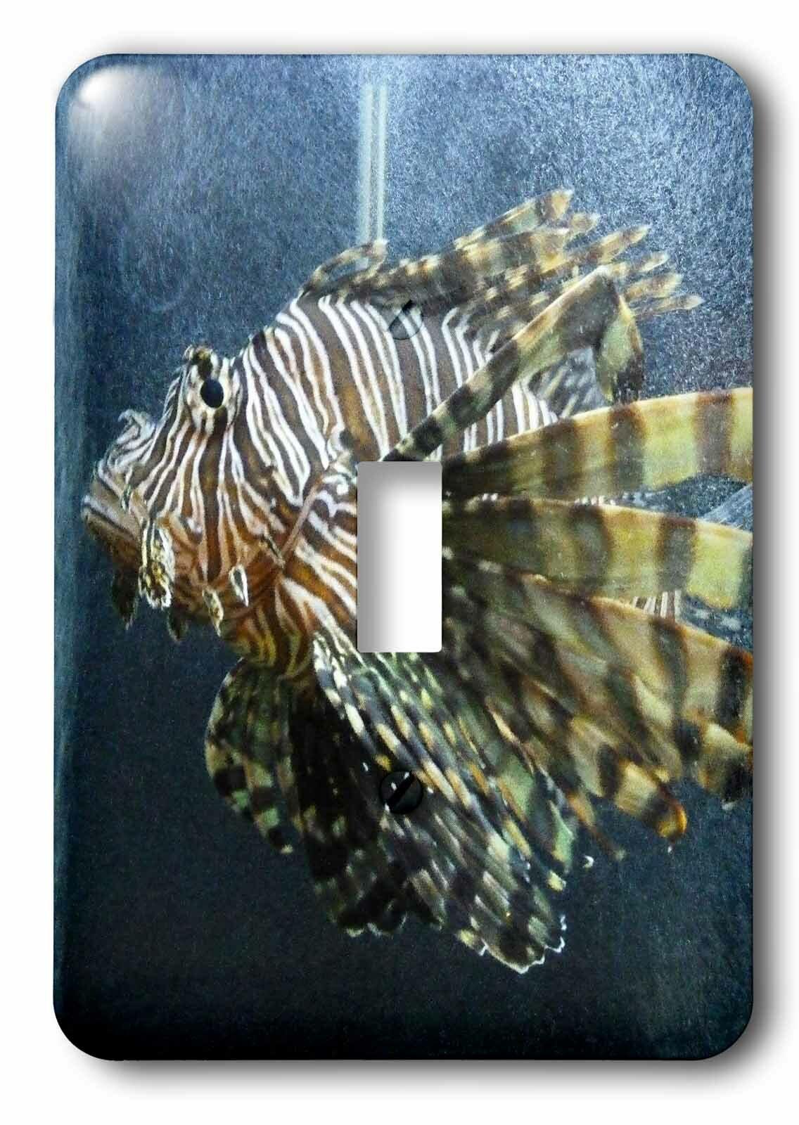 3drose Switch Lion Fish 1 Gang Toggle Light Switch Wall Plate Wayfair