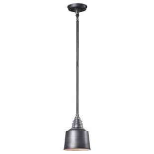 Cearley 1-Light Cone Penda..