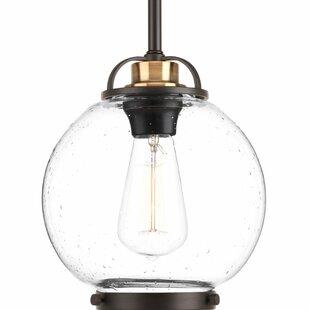 Suzan 1-Light Pendant by W..