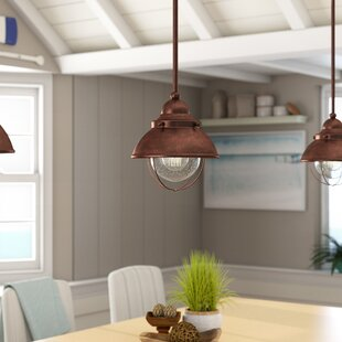 Online Reviews Audrey Outdoor Pendant By Birch Lane™