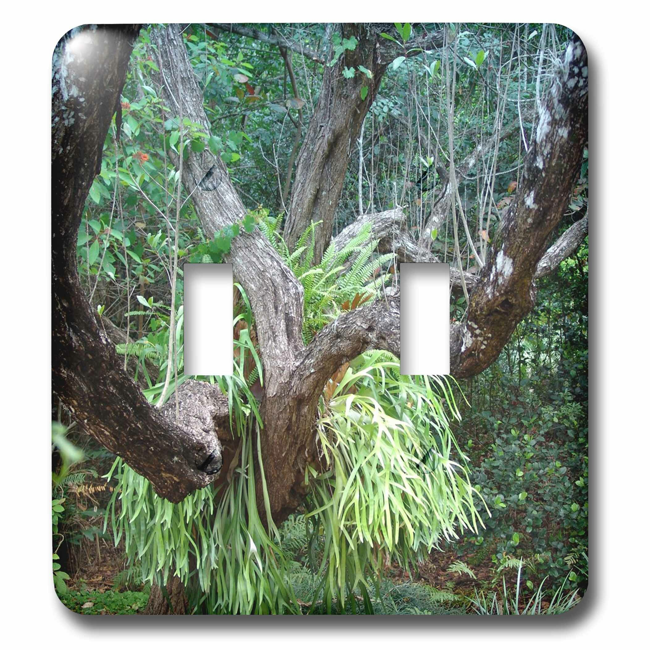 3drose Tropical Forest 2 Gang Toggle Light Switch Wall Plate Wayfair