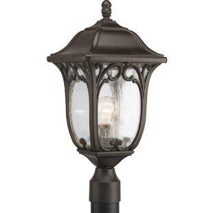 Affordable Triplehorn 1-Light Lantern Head in Espresso By Alcott Hill