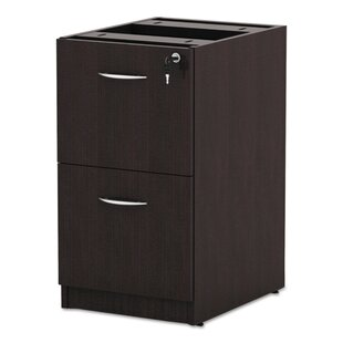 Kania 2-Drawer Vertical Filing Cabinet by Symple Stuff Today Only Sale