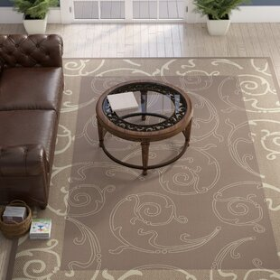 Unique Brown & Natural Indoor/Outdoor Area Rug