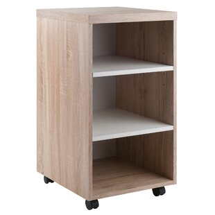 Read Reviews Midway Mobile Vertical Filing Cabinet by Ebern Designs