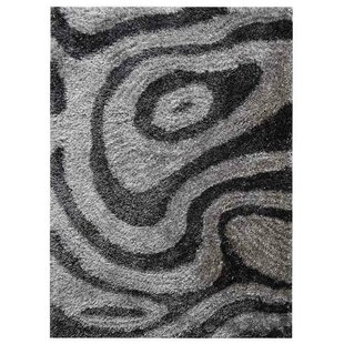 Price comparison Ry Hand-Woven Gray/White Indoor/Outdoor Area Rug By Latitude Run
