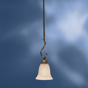 Darby Home Co Bafford 1-Light Cone Pendant