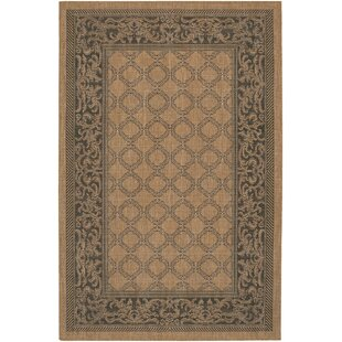 Celia Cocoa/Black Indoor/Outdoor Area Rug by Beachcrest Home