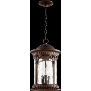 Witte 3-Light Outdoor Hanging Lantern