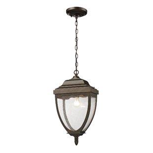 Charlton Home Cockermouth 1-Light Outdoor Pendant
