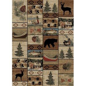 american beigebrown area rug