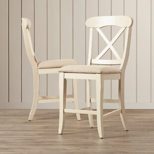 Bridgeview 24 Bar Stool (Set of 2) Beachcrest Home