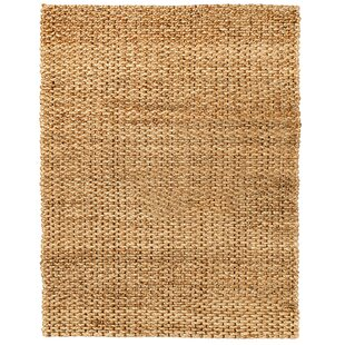 Lumbrook Hand-Woven Brown Rug by Breakwater Bay