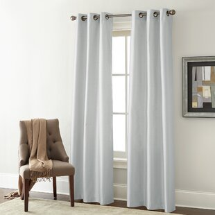Edison Solid Room Darkening Grommet Curtain Panels (Set Of 2) by Alcott Hill