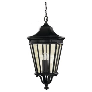 Darby Home Co Chesterhill 1-Light Outdoor Hanging Lantern