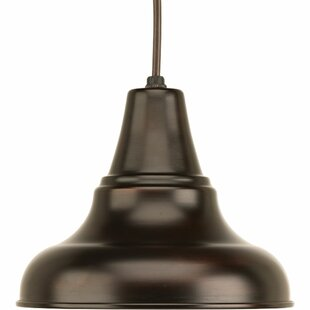 Hailey 1-Light Outdoor Pendant