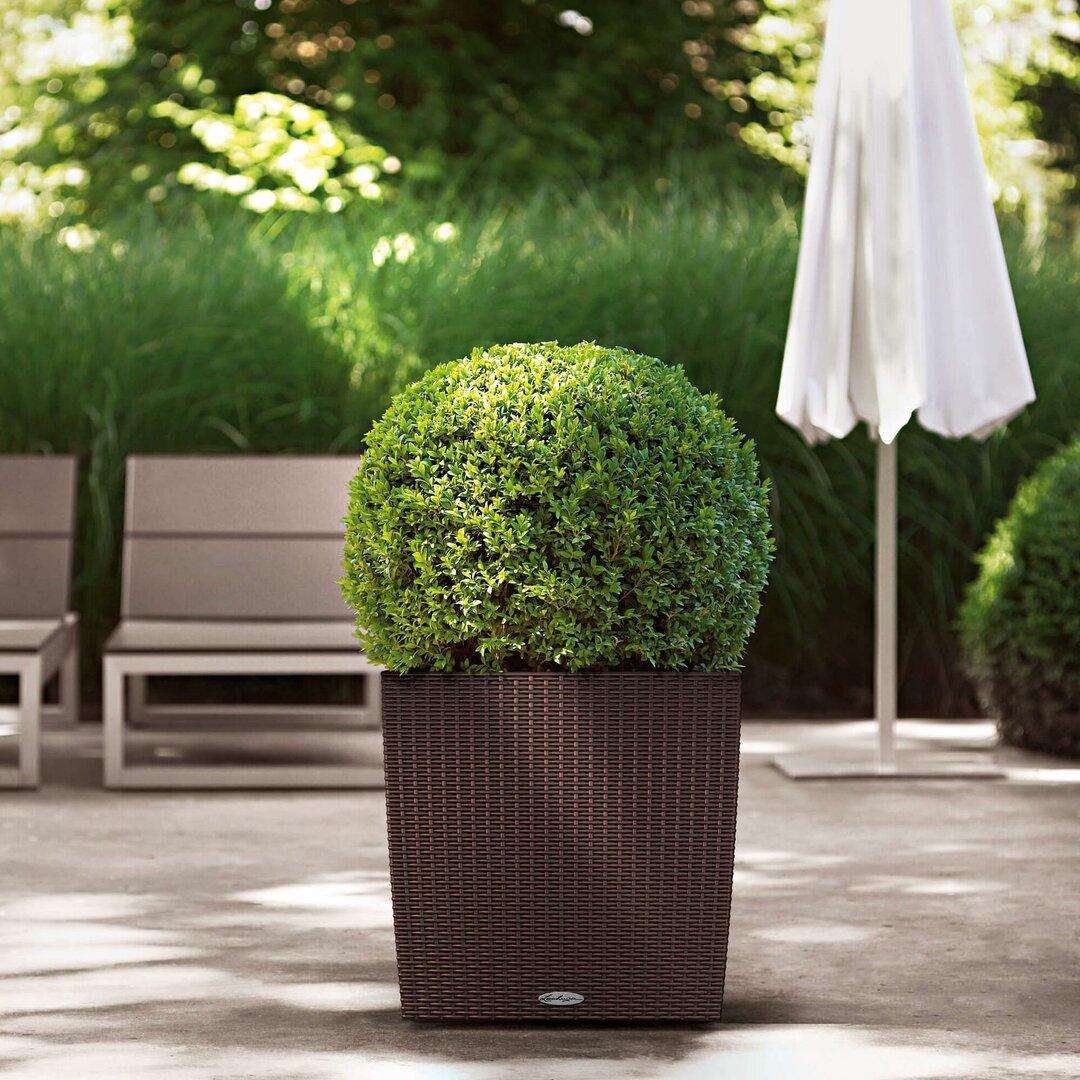 Rattan Self-Watering Planter Box