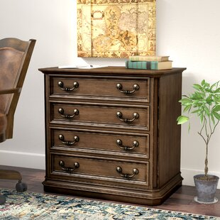 Passabe 2-Drawer Lateral Filing Cabinet by August Grove Best #1