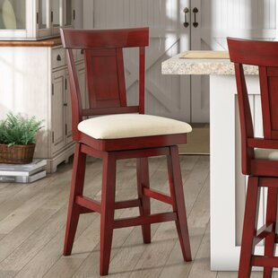 Colasanto 24 Swivel Bar Stool