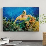 hawksbill-turtle-swimming-through-caribbean-reef-photographic-print-on-canvas