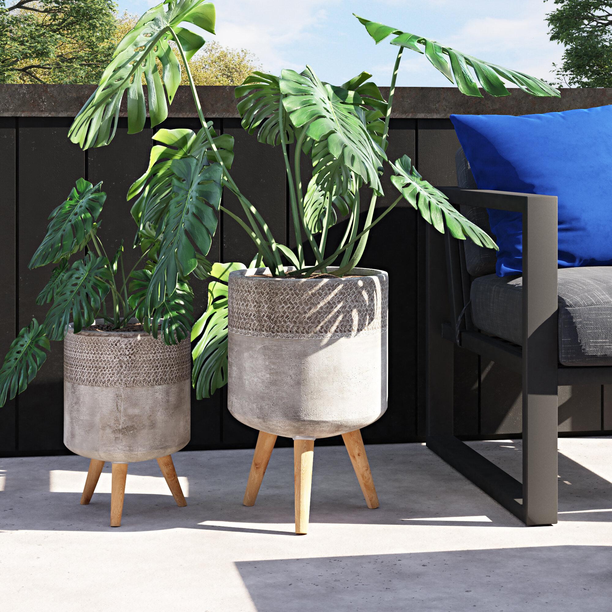Eleada 2 Piece Concrete Pot Planter Set Reviews Allmodern