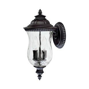 Watts 2-Light Outdoor Wall Lantern