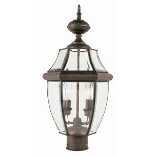 Thiel 2-Light Lantern Head by Darby Home Co