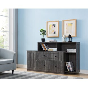 Candleick 2-Drawer Lateral Filing Cabinet by Latitude Run