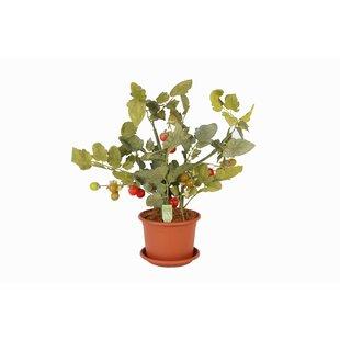 Blumentöpfe & -kübel: Eigenschaften - Mit Bewässerungssystem ...