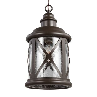 Breakwater Bay Falmouth 1-Light Outdoor Hanging Lantern