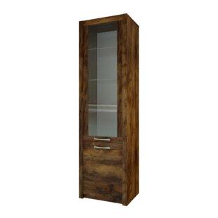 Fulford 2 Door Display Cabinet by Brayden Studio