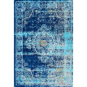 Taghzour Faded Blue Area Rug