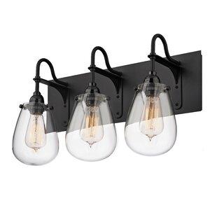 Williston Forge Kiley 3-Light Vanity Light