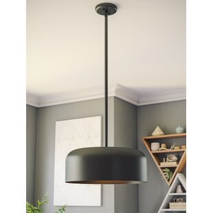 Clancy 2-Light Dome Pendan..