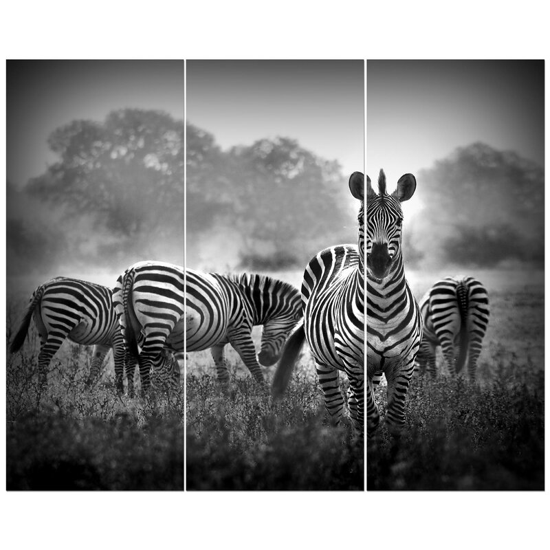 East Urban Home Zebra In Black And White Photographic Print Multi Piece Image On Wrapped Canvas Wayfair