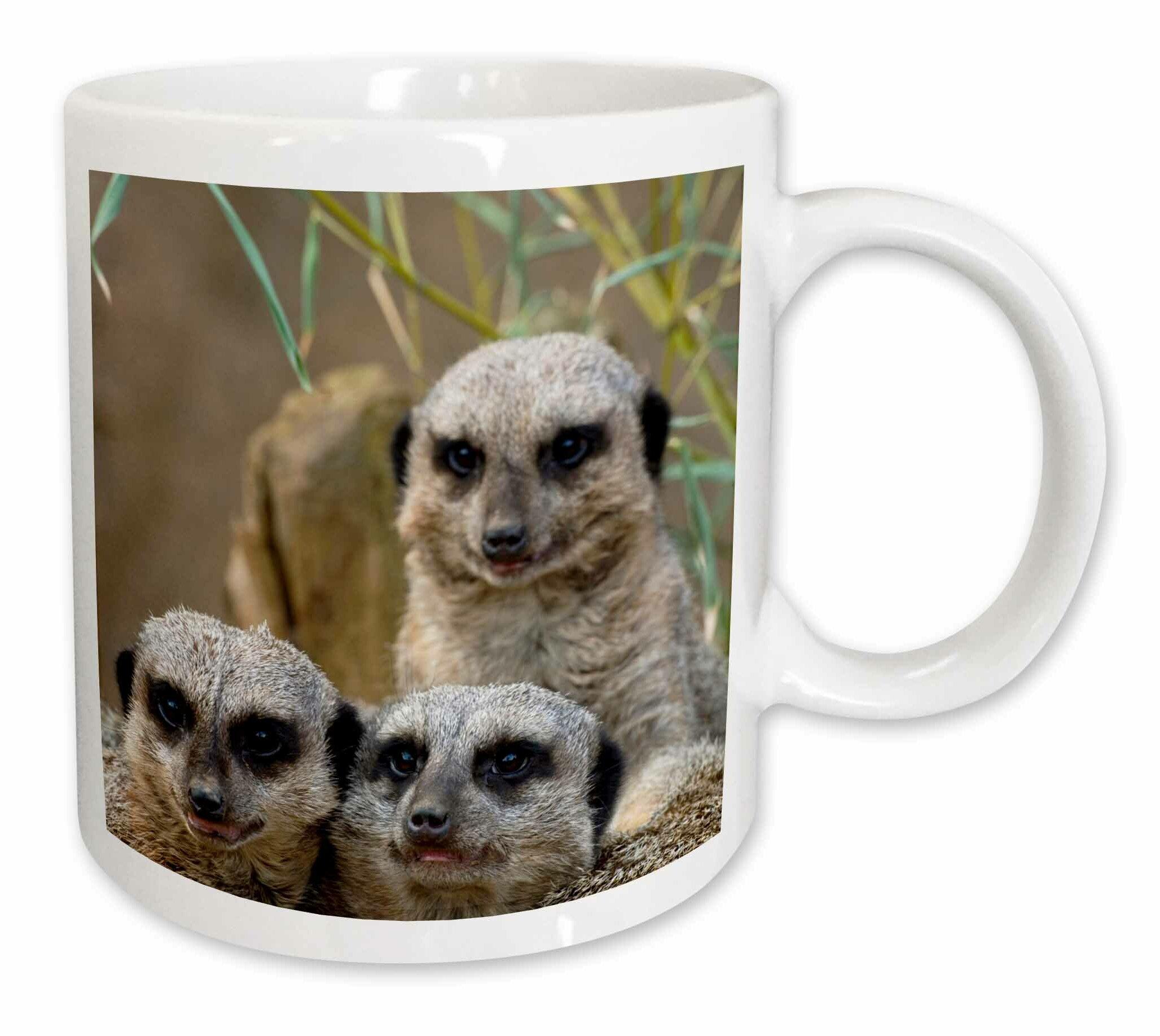 East Urban Home Meerkats Louisville Zoo Louisville Kentucky Coffee Mug Wayfair Ca