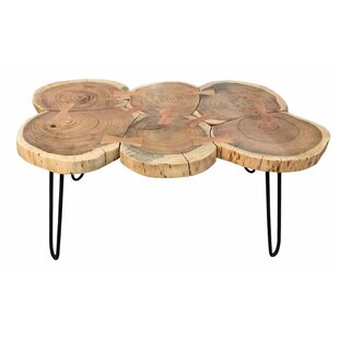 Sara Coffee Table By Union Rustic