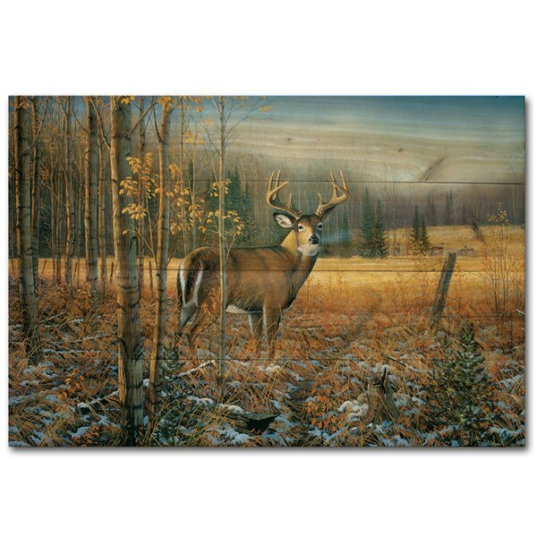 Wgi Gallery November Whitetail Deer By Sam Timm Painting