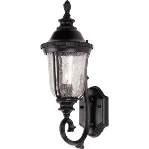 Ehrhardt 1 Light Outdoor Sconce