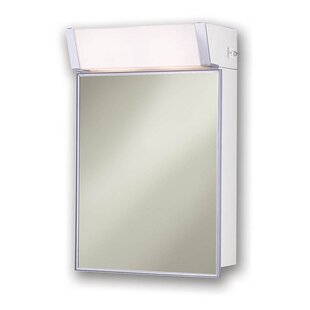 Billy 16 x 24 Surface Mount Medicine Cabinet with Lighting by Rebrilliant