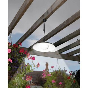 Reiss Solar Powered Hanging LED Pull Chord 1 Light Outdoor Pendant Image