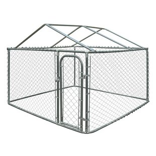 Dog Kennel 10x10x6 Wayfair