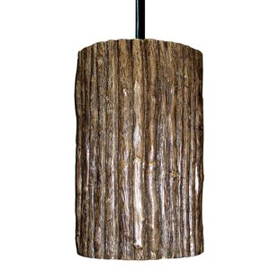 A19 Nature Twig 1-Light Cylinder Pendant