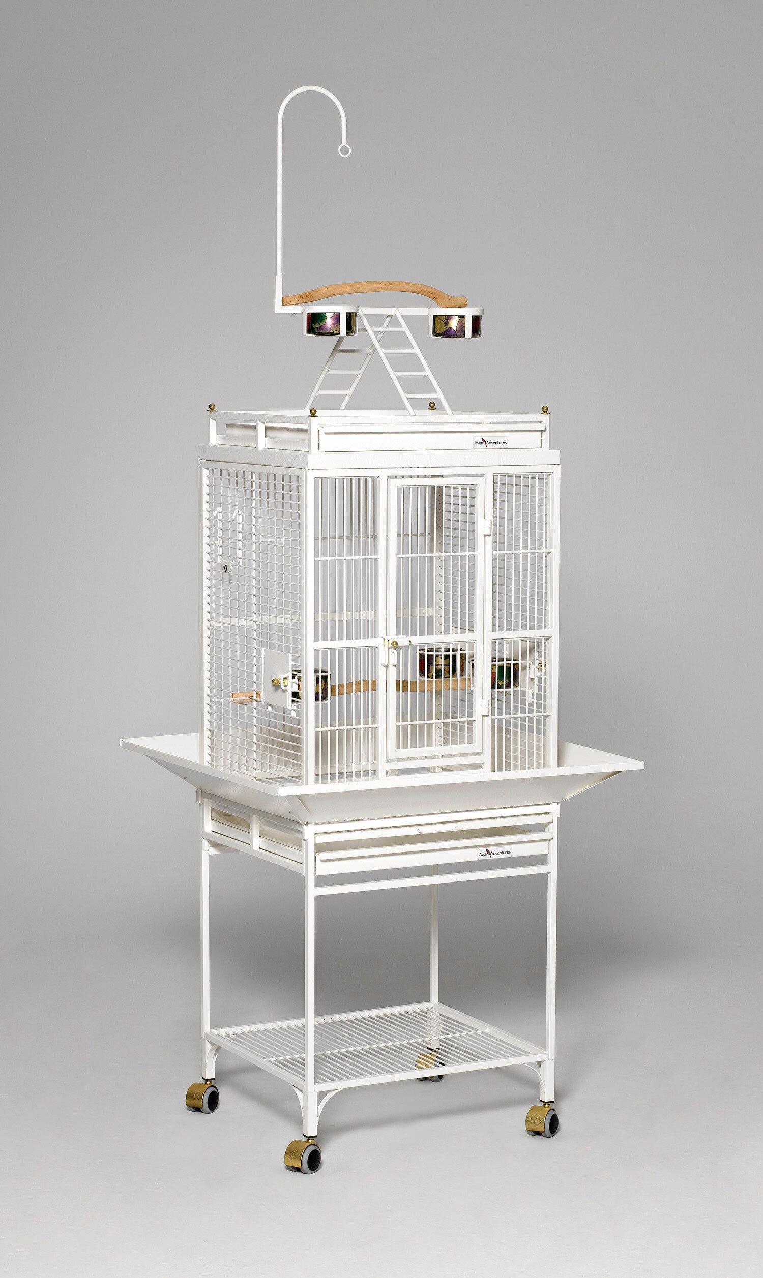 Tucker Murphy Pet Huxley Nina Playtop Bird Cage Reviews Wayfair