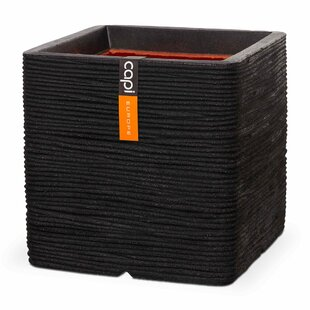 Criss Planter Box By Sol 72 Outdoor