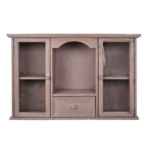 Jovan Wall Mounted Curio Cabinet By Brambly Cottage