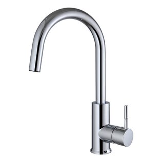Century Home Living Single Handle Kitchen Faucet