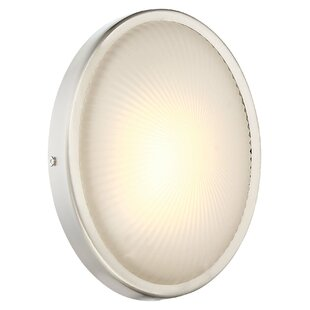 Carles 1-Light Outdoor Sconce