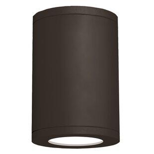 Orren Ellis Robyn 1-Light Flush mount