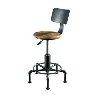 Gowan Contemporary Adjustable Height Swivel Bar Stool by Williston Forge